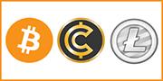 BitCoins & Altcoins - 100% anonym bezahlen mit den immer beliebteren Kryptowährungen.